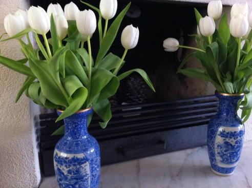 foto bloem